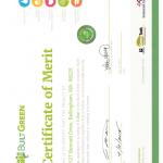 High-Performance-Positive-Energy-SIP-House-Bellingham-WA-build-green.jpg