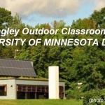 LEED-Platinum-SIP-Classroom-Duluth-MN-1.JPG