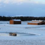 Snow-view1.jpg