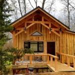 Stepp-Treehouse-5.jpg
